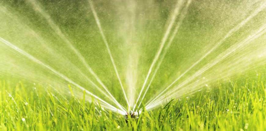 Watering Two Days Per Week (And Other Sacramento Water Saving Tips)