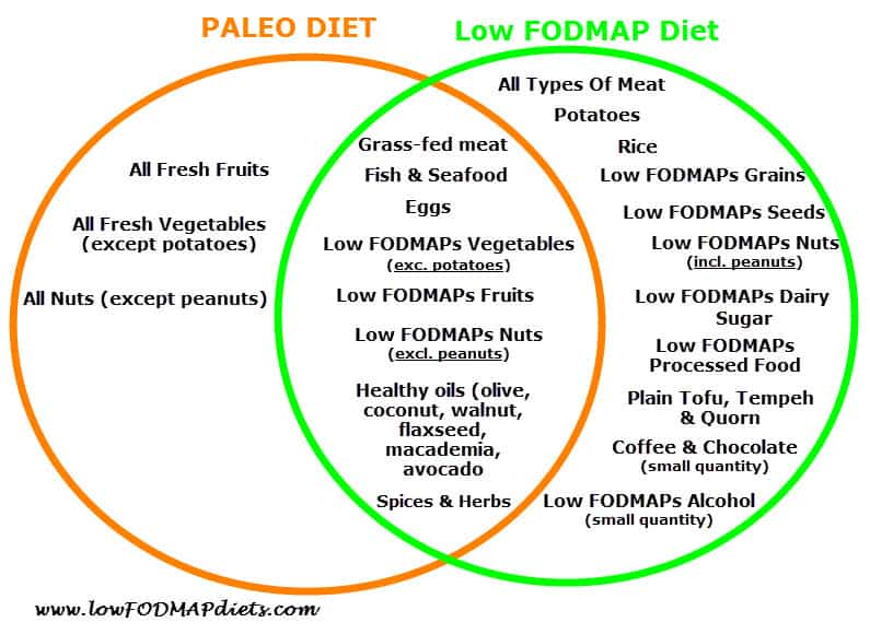Paleo Diet vs Low FODMAP Diet   Journey Into The Low FODMAP Diet