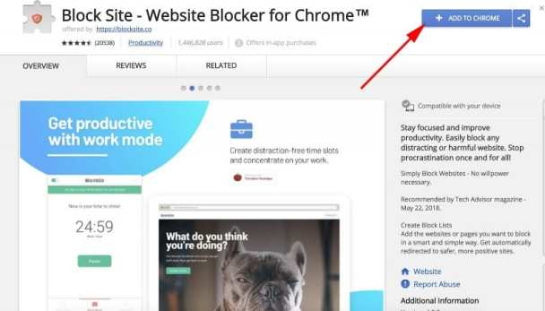 install the Block Site Google Chrome extension