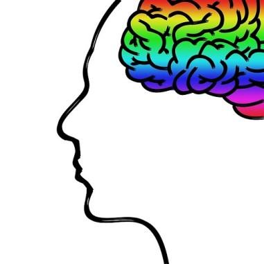 body_brain