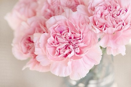 body_pinkflower