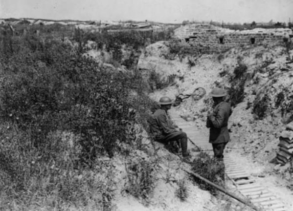 This photograph, attributed to John Warwick Brooke, shows two British soldiers talking in an overgrown German trench. They are surrounded by wire and rubbish but flowers are blooming all over the sides of the trench. When the soil was disturbed, many flowers, particularly poppies, flourished in the middle of the battlefield.