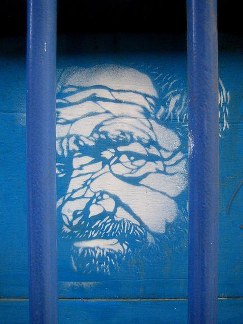 Behind Bars | Credit: http://www.flickr.com/photos/justin_case