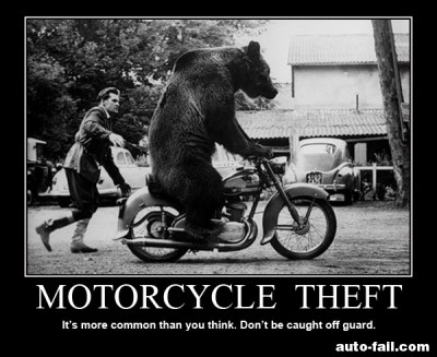 If a bear can steal your motorcycle, you deserve it!
