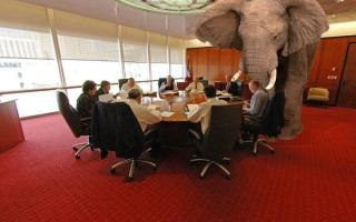 Language, The Law and the Elephant in the Room