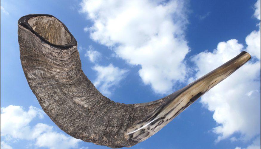 """Résultat de recherche d'images pour """"photos du shofar"""""""