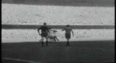 """""""Maracanazo"""": Se cumplen 65 años de la gesta deportiva más publicada en la historia del Uruguay"""