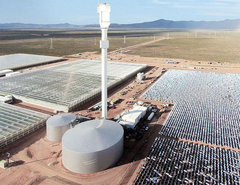 Utilizan sol y agua de mar para prescindir de agroquímicos y agua potable en cultivos del desierto de Australia. Foto: Sundrop Granjas