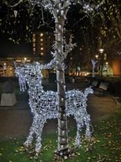 A beautiful festive reindeer
