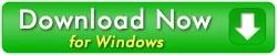 lt remote support windows