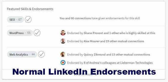 LinkedIn SEO and Endorsements