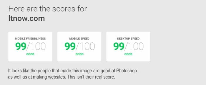 LTnow Website Speed Test Results