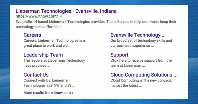 Lieberman Technologies SEO search results