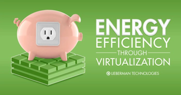 Energy Efficiency Through Virtualization