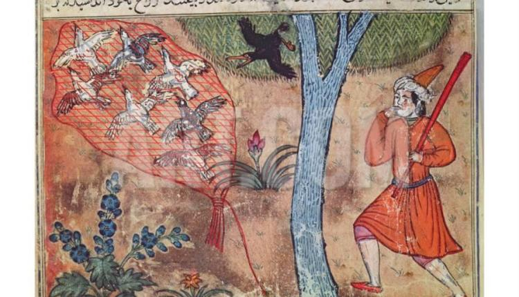 hunting-birds-from-the-book-of-kalila-and-dimna-from-the-fables-of-bidpay_a-g-4048338-8880731