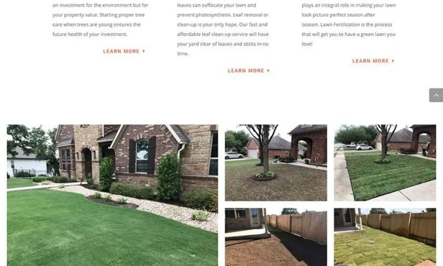 Texas Country Lawn Care Website Build