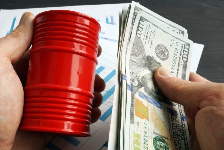 Planejamento para margem de lucro, buscando parcerias para melhores receitas financeiras. Gestão de custos.