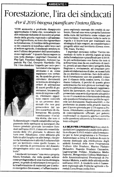 Forestazione quotidiano 12 02 2016