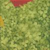 Ott/Nov2015 - VERDE GRAFICA - trifolium - trifogli. Pittura lavabile su legno 30x30.