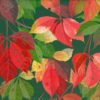 Ott/Nov2016 - L'AUTUNNO - parthenocissus quinquefolia - vite americana. Pittura lavabile su legno 30x30.