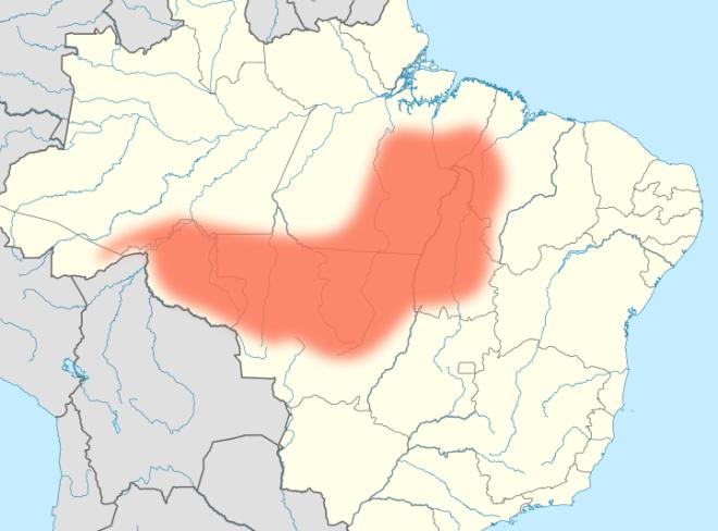 La frontiera agricola amazzonica