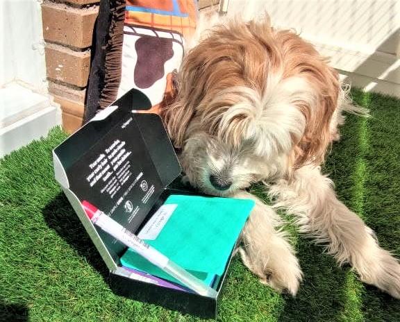 Test ADN perro
