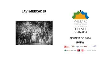 nominados_lucesdegranada_2016-17