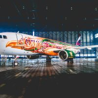 Brussels Airlines and Tomorrowland create AMARE (OO-SNF)
