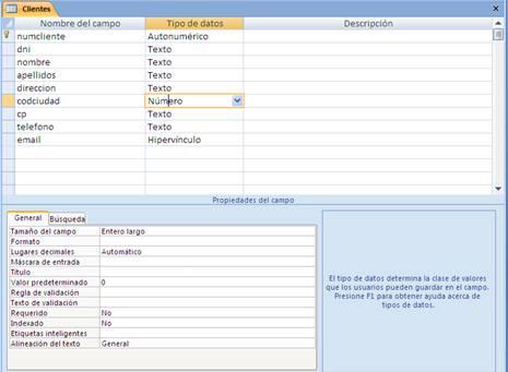 Propiedades básicas de los campos de una tabla