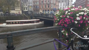 amsterdam-2014-vueling-lucianoblancatoit (163)