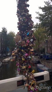 amsterdam-2014-vueling-lucianoblancatoit (171)