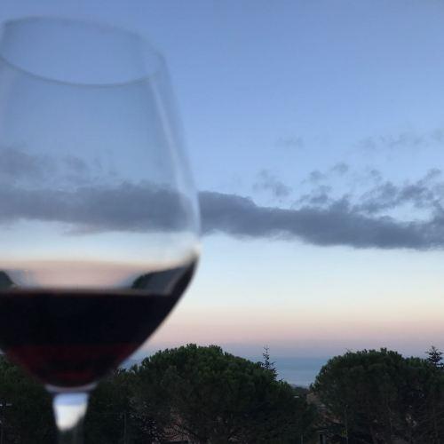 Calici di Vino alla #ViniMilo2018