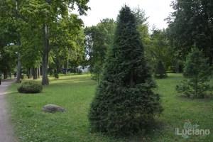 I giardini di Peterhof - San Pietroburgo - Russia