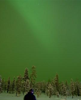 Seeking the Northern Light