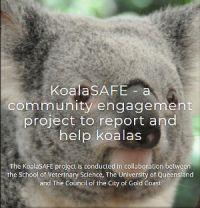 KoalaSafe