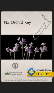 NZ Orchid key splash screen