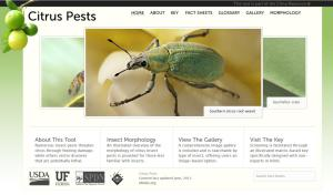 Citrus Pest Key Website home page