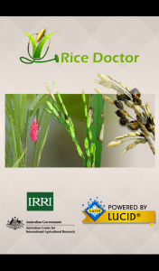Rice Doctor splash screen