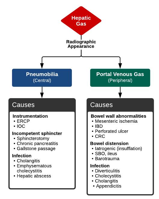 Portal venous gas vs. Pneumobilia
