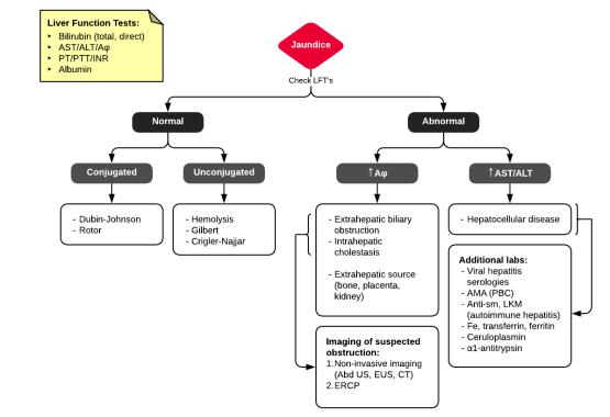 Evaluation of Hyperbilirubinemia