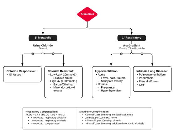 Algorithm for Evaluation of Alkalemia