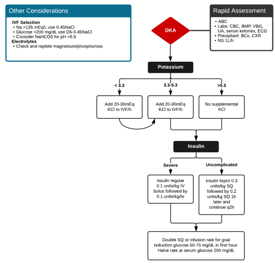 Algorithm for the Management of Diabetic Ketoacidosis