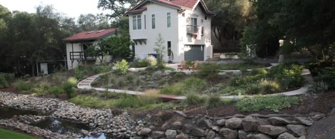 streambank garden