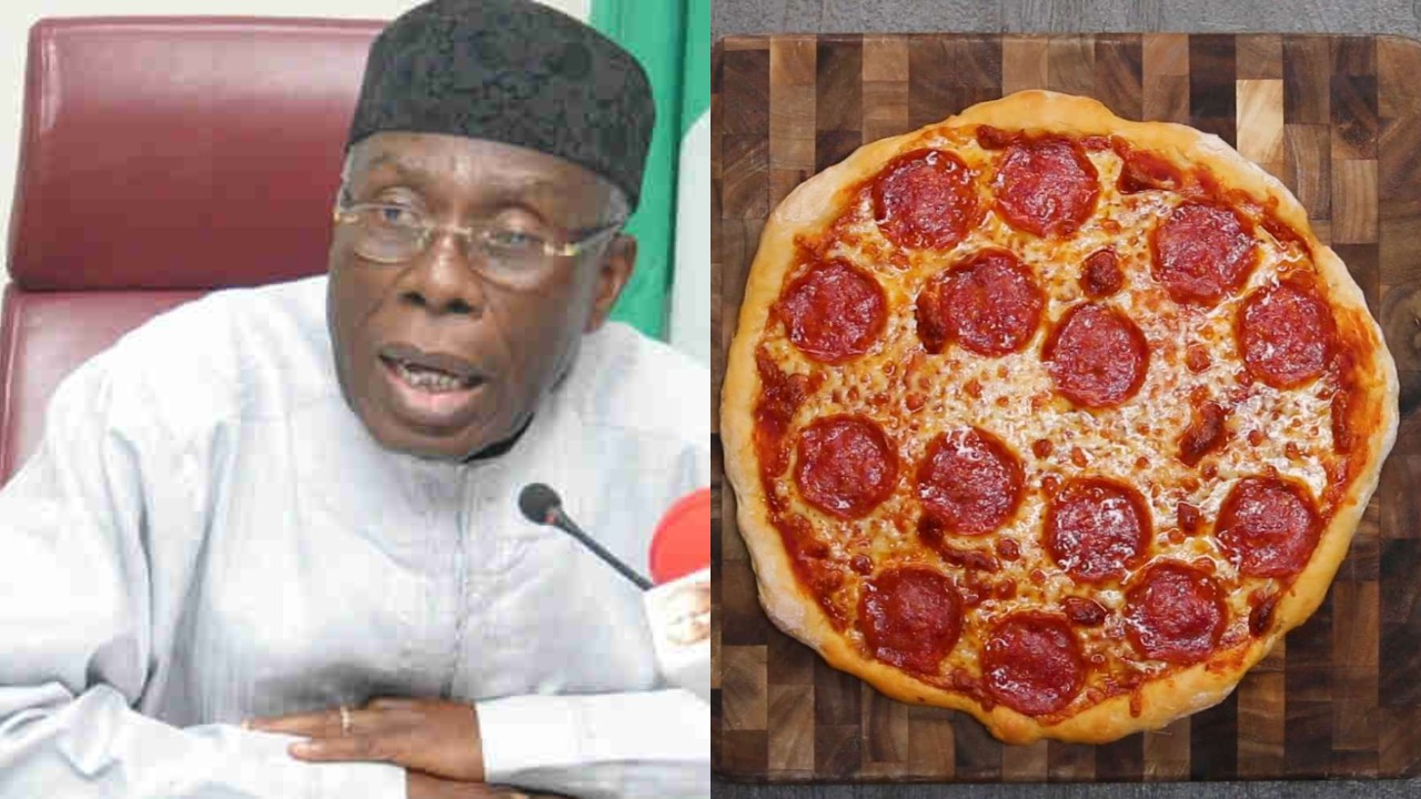Image result for Minister: Nigerians now order Pizza from London