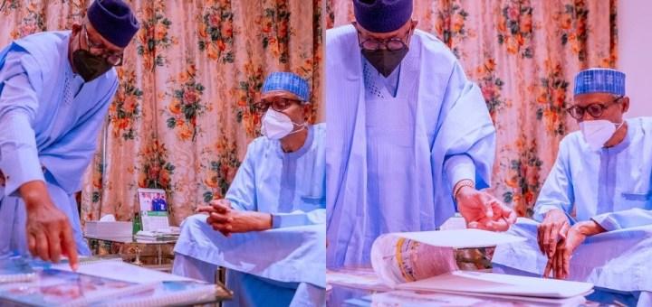 Ogun governor takes photos of his achievements to Buhari in Abuja