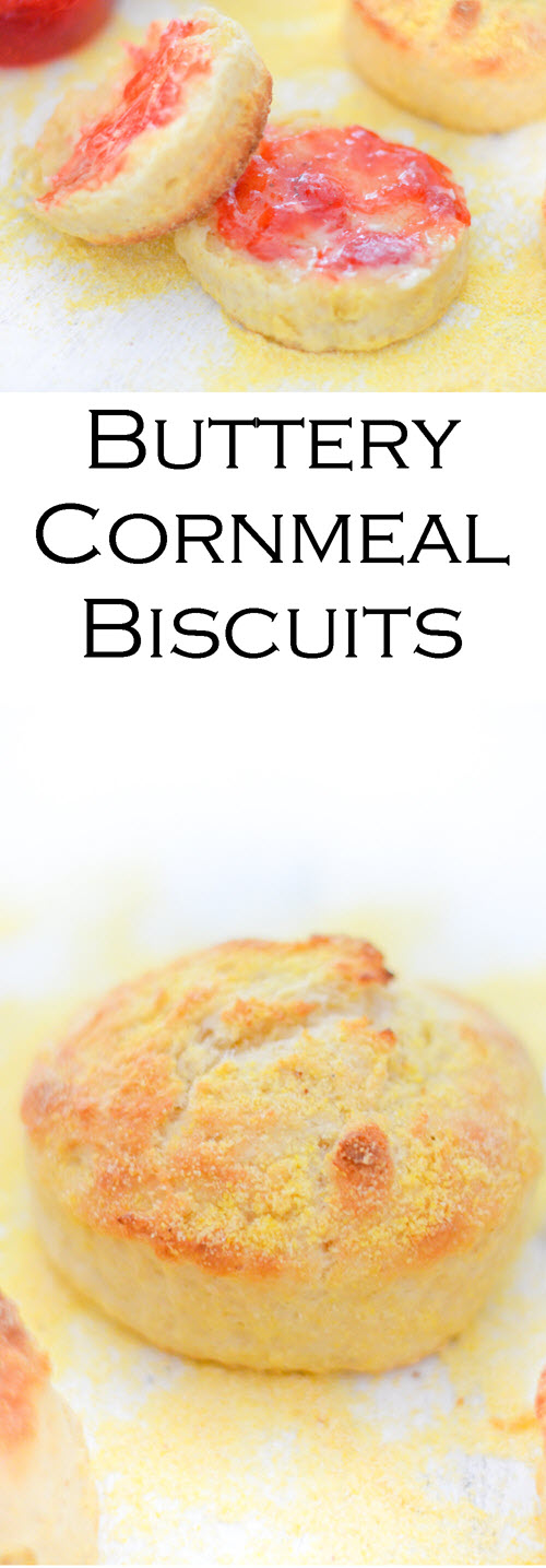 Homemade Cornmeal Biscuits. This fast and easy recipe for delicious cornmeal biscuits is a must in your recipe box. Crunchy biscuits, that come together and cook quickly, this recipe gives flaky biscuits everyone will love.