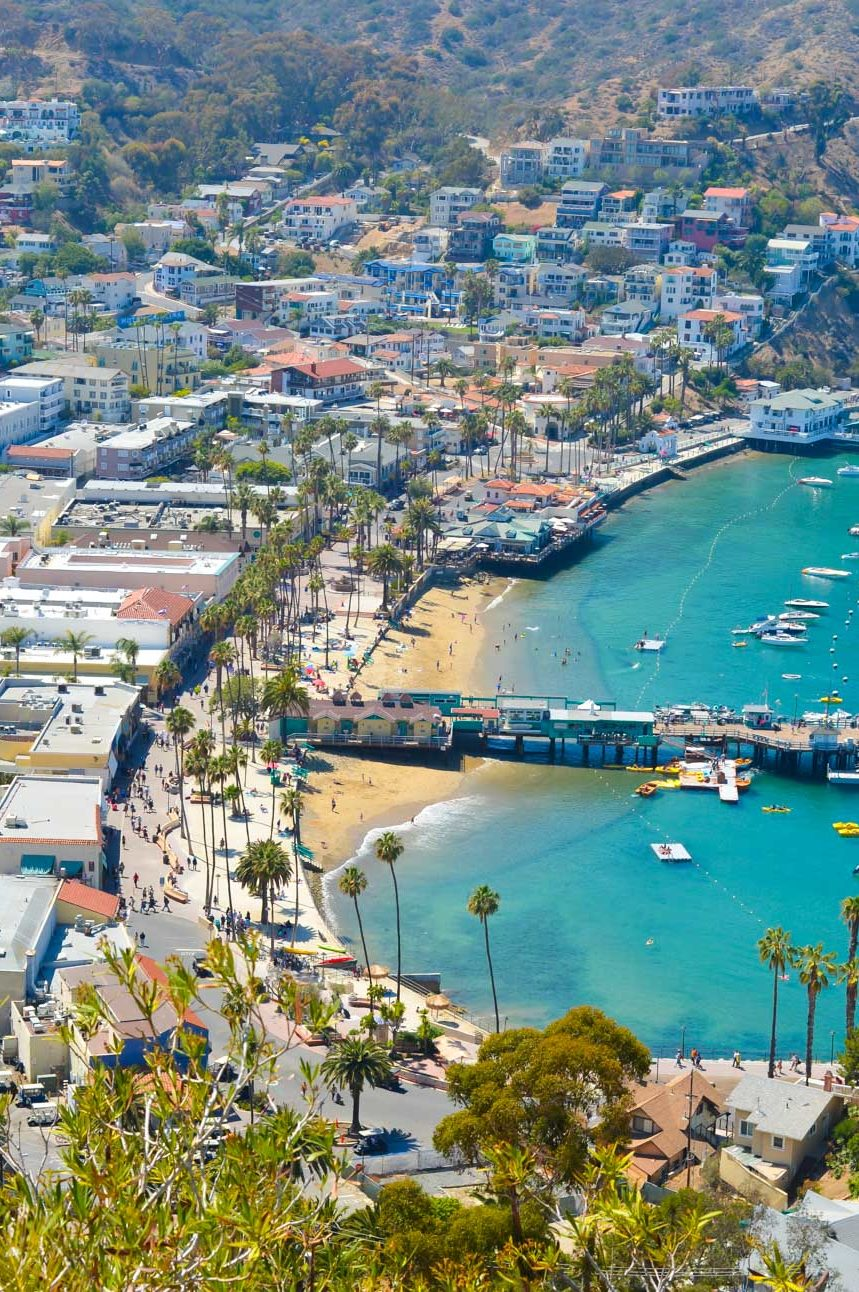 A Day on Catalina Island