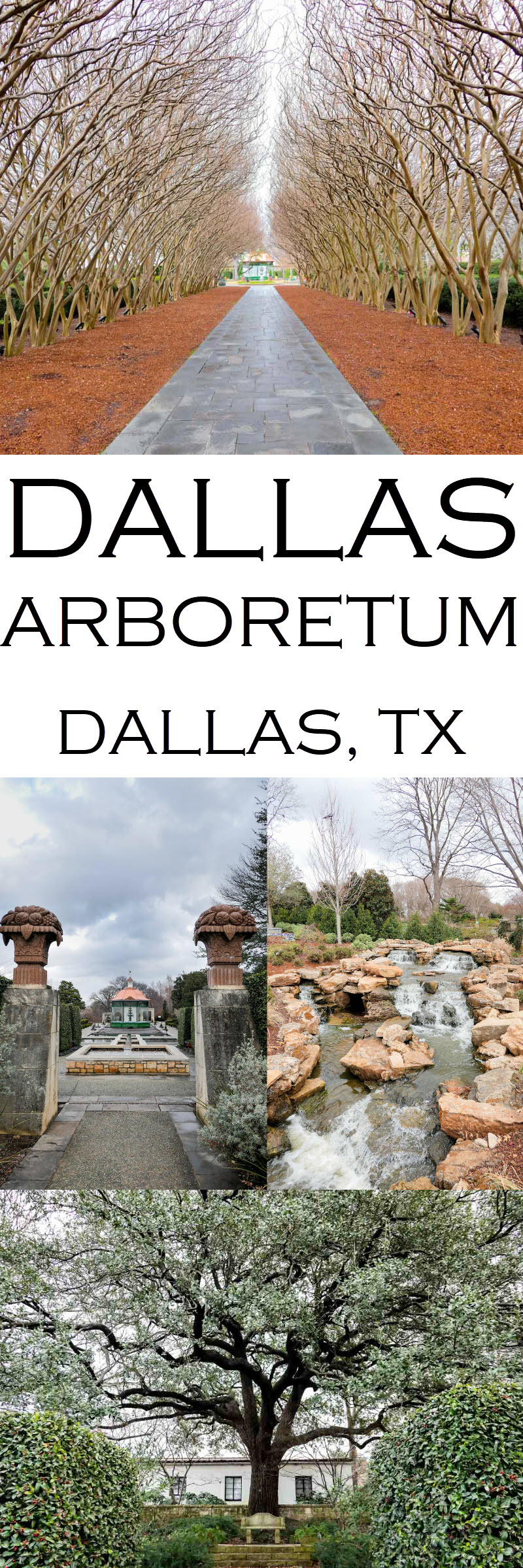 Dallas Arboretum + Botanical Gardens Photos + Review #lpworldtravels #texas #dallas #arboretums #botanicalgarden #travel #travelblog #travelblogger #travelwriter #travelguide