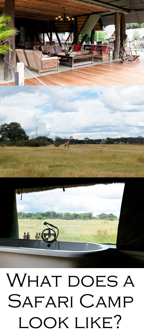 What does a safari camp look like? Where to Stay in Hwange National Park - The Hide Photo Review. #africa #zimbabwe #hwange #zim #southafrica #traveblo #safari #safaris #travelblogger #blogger #lpworldtravels
