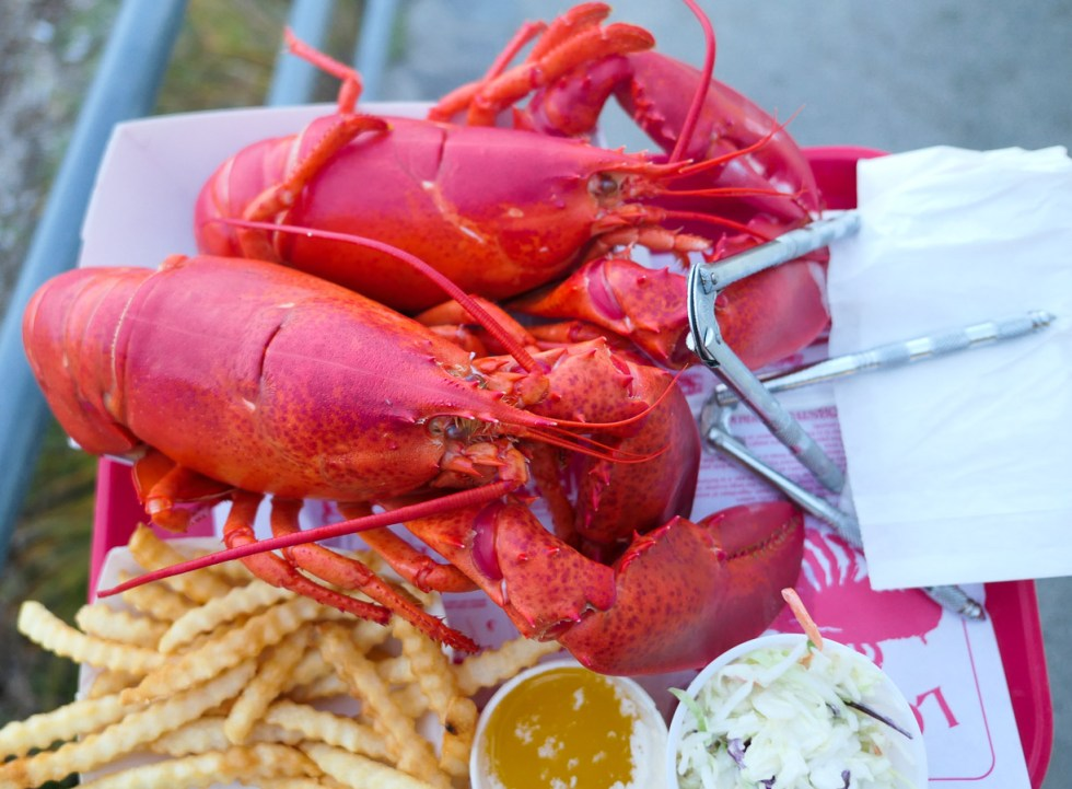 Portland Maine Things to Do and Restaurants - the Lobster Shack Restaurant in Cape Elizabeth